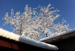 b_300_300_16777215_00_images_eikones1_winter.jpg